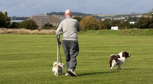 disabled man walking dog