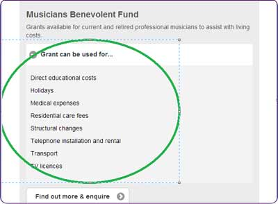 Example of a Grant can be used for... box on the Turn2us Grants Search